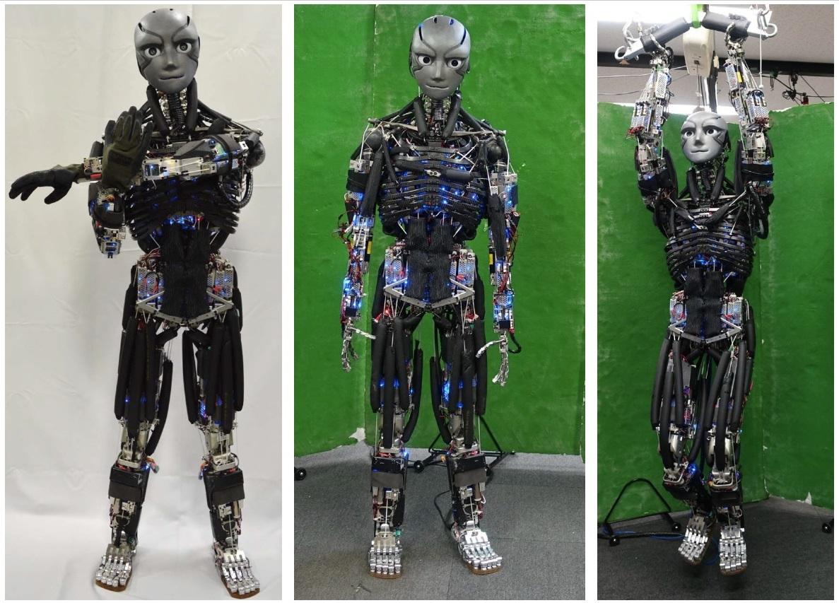 Японские роботы всё больше похожи на T-800