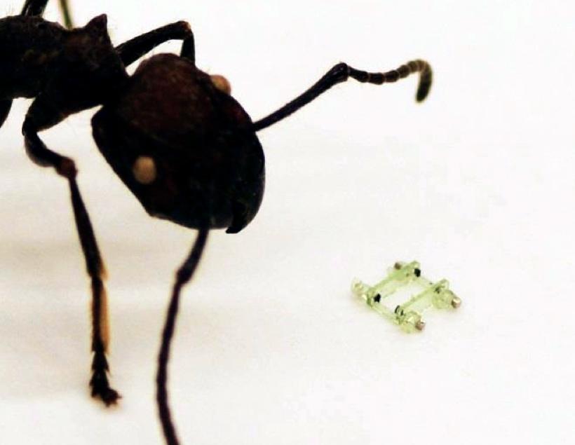 Создан самый маленький четвероногий робот